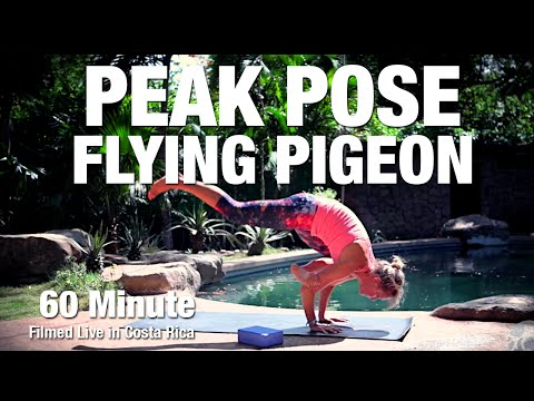 Flying Pigeon Yoga Class - Live from Costa Rica - Five Parks Yoga
