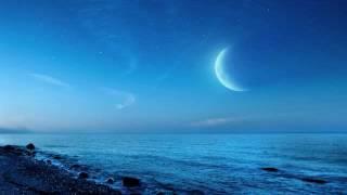 月の光 Clair de lune ゾルタン・コチシュ
