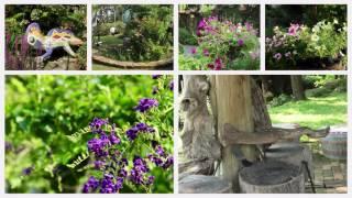 松濤園歐式餐廳庭園篇2017年7月