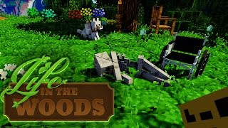 LIFE IN THE WOODS ⛺️ 44 • Timmy's Mindgames
