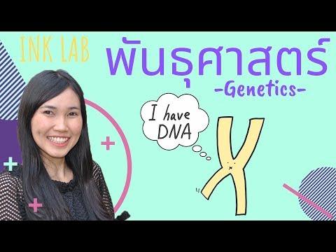🧬การถ่ายทอดลักษณะทางพันธุกรรม 1 : ศัพท์พันธุศาสตร์ [Biology#1]