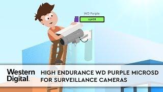 High Endurance Western Digital WD Purple microSD Cards for Surveillance Cameras