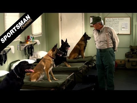 Saving Private K9 with R. Lee Ermey Premieres Thursday May 15