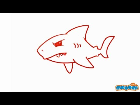 How to Draw a Shark | Step By Step Drawing for Kids ...  How to Draw a S...