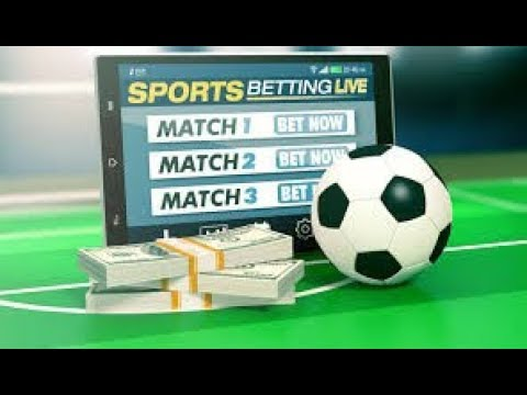 How to always win in sports betting betting persimmons fuyu
