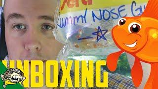 Unboxing betta fish out of water. AGAIN! Corydoras Hastatus! Woo! thumbnail