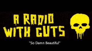 A Radio With Guts- So Damn Beautiful YouTube Videos