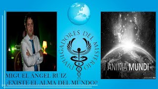 ¿EXISTE EL ALMA DEL MUNDO? por MIGUEL ANGEL RUIZ