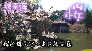 城南海_桜色舞うころ♪ albumサクラナガシ 中島美嘉 [3840×2160 4k]