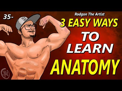 35 - 3 Easy ways to learn ANATOMY for artists
