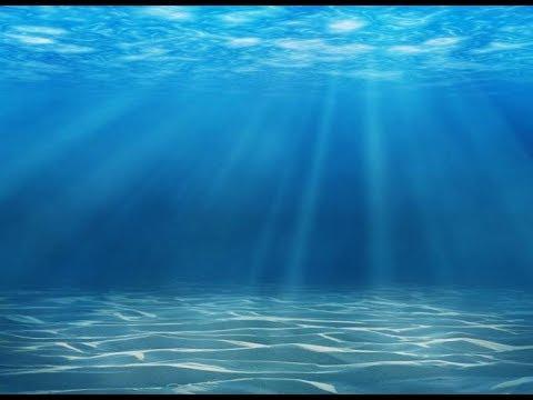 Предсказание для водных знаков (раки,рыбы,скорпионы)