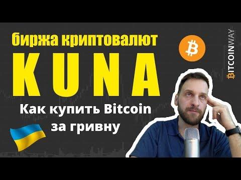 Как купить Биткоин за гривну. Обзор биржи криптовалют Kuna