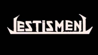 Testisment - Problematix (Cover Shit Mix)