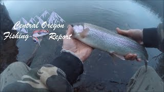 Download Video Spring Bass & Trout Close & Far With COFR MP3 3GP MP4
