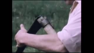 1983 год. Таёжные десанты магаданцев в помощь труженикам села.