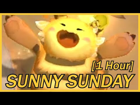 Sunny Sunday.mp3 (1 Hour)