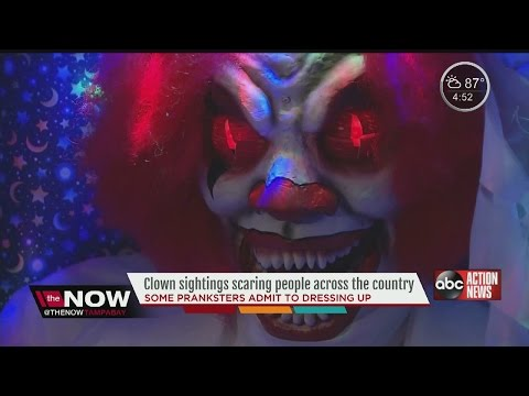 The Now Tampa Bay U.S. Clown Incidents