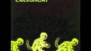 ElectroniCAT - I Love You So