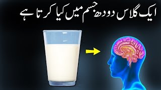 What Happens In Your Body When You Drink Milk Daily