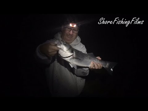 Bass Fishing In North Devon