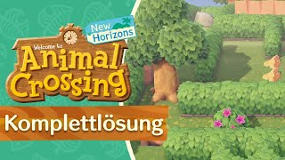 Komplettlösung: Mai Feierei Labyrinth (2021) 💡 in Animal Crossing New Horizons 🌴