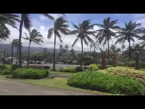 LAX Honolulu Hawaii VR Manoa UH Haleiwa Kailua Laie Kahuku Aloha Polynesian