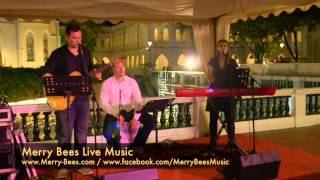 Merry Bees - Cal sings Love Song (by Sara Bareilles) Top 40s
