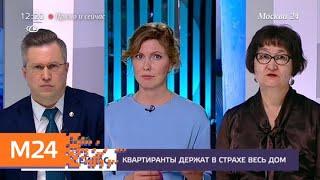 &quot;Прямо и сейчас&quot;: буйные соседи - Москва 24<