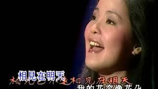 Download Teresa Teng (鄧麗君) - O-14 - 相見在明天 (Xiang Jian Zai Ming Tian)