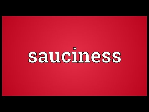 Sauciness Meaning