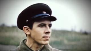 """""""Солдаты наши меньшие"""" Фестиваль Радонеж 2015"""