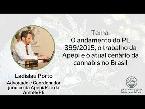 O andamento do PL 399/2015, o trabalho da Apepi e o atual cenário da cannabis no Brasil