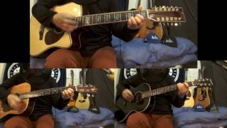 Martin HD-28 (Rhythm Guitar) / ZENN ZD75CE-12 (Rhythm 12strings Gui...