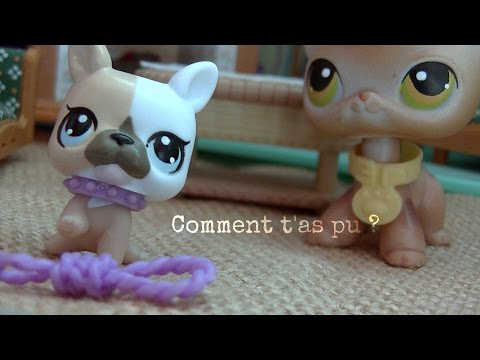LPS Short Film How could you? Sad