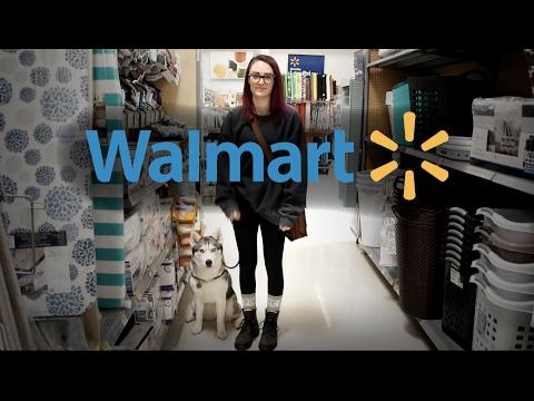 Off Leash Service Dog Walmart Training | Voodoo The Husky