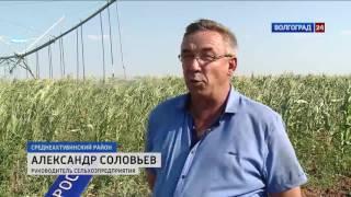 видео Сельскохозяйственная мелиорация, мелиорация сельскохозяйственных земель