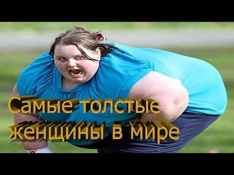 очень толстые женщины знакомства
