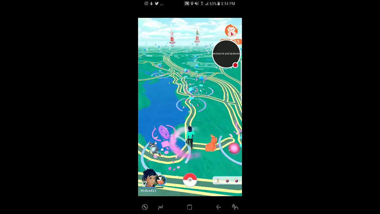 Pokemon Go NYC Magikarp Nest in Central Park