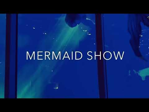 Helsinki Mermaid School - Boat Trade Fair 2020 - Sea Safety Scandinavia