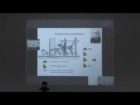 "IIT Madras- CCBR- Prof  Peter Dayan-""Neural Reinforcement Learning"""