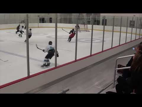 2005 CarShield AAA Hockey Vs Columbus Jr Bluejackets