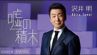 「嘘の積木」沢井明 cover HARU