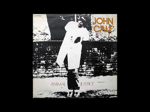John Cale - Chicken Shit - 1977