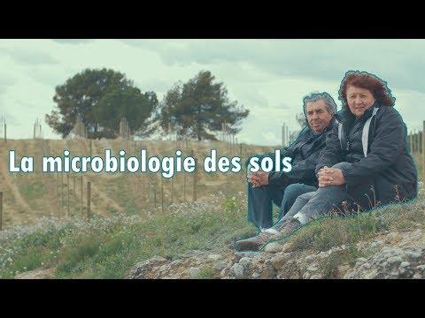 Le sol est vivant ! - La microbiologie des sols  - Claude & Lydia Bourguignon.