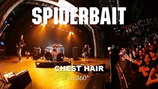 Watch Spiderbait Chest Hair video
