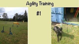 Agility Training #1   Hürden Und Tunnel   Hundekanal