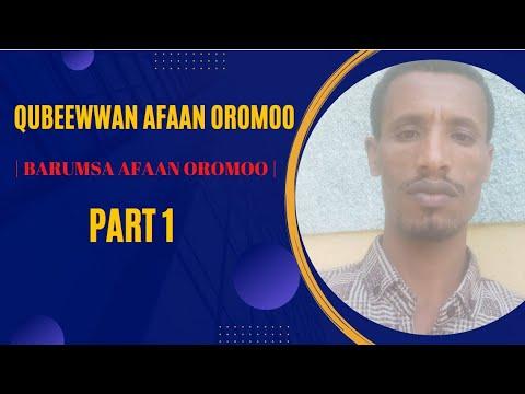 Download Barumsa Afaan Oromoo kutaa 1ffaa   Qubee Afaan Oromoo(Learn Afan Oromo)