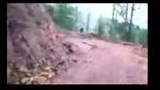 Bigfoot Chilean Thumbnail