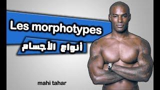 les morphoype et nutrition  الدرس الثاني: أنواع الأجسام التدريب و التغذية الخاصة بكل نوع