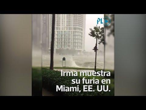 Guatemalteco Muestra Inundaciones Por Huracán Irma En Miami | Prensa Libre